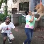 GAURAVZONE 'Flying Dog' के वीडियो के लिए दिल्ली का YouTuber गिरफ्तार